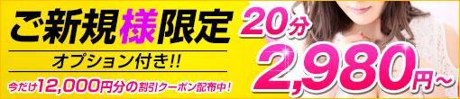 【▼ご新規割引】最安値¥2,980~ご案内!!